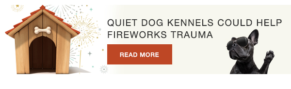 Quiet dog kennels could help fireworks trauma
