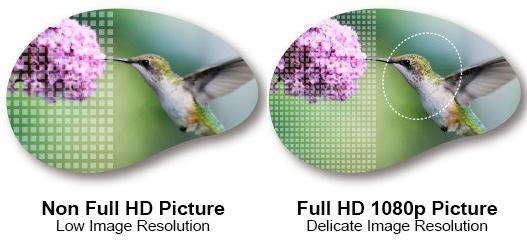 BenQ W1110 DLP 1080p Full HD Projector