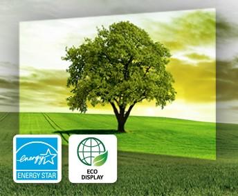 Eco Display
